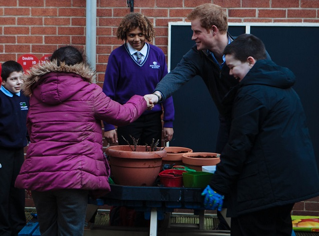 Prince Harry eco-garden